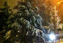 SnapShot (iPhone 4) / Fotos die ich unterwegs mit meinem iPhone4 geschossen habe.