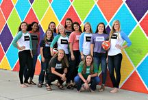 2017 Lady Tornadoes Varsity Volleyball