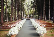 Decoração - Casamento / Idéias de decoração para Festas e Casamentos.