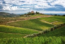 Chianti Area / This popular Tuscan region is universally acclaimed for its classic wines and natural beauty. You'll discover a magical world of woods alternating with vines and olive trees, Romanesque churches, medieval farmhouses, Renaissance villas and castles. #Tuscany #Chianti #Italy