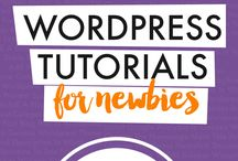 WordPress Tips / Need help building or changing your WordPress website or blog? Get WordPress tips for business owners and bloggers.  wordpress basics, wordpress seo, wordpress website, wordpress design, wordpress theme, wordpress blog, business website, business blog, wordpress for beginners, wordpress plugins, wordpress hacks