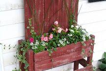 Garden/outdoor ideas