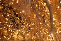 My Winter Wedding / by Ashley Davis