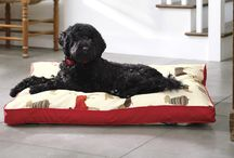 Orvis Pets Must-Haves / Terrific new dog beds, toys, problem solvers, and travel gear to keep you and your dogs happy. Find more at orvis.com/pets / by Orvis