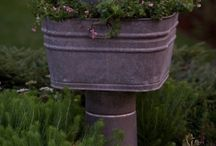 Hagen min / Inspirasjon til hagen