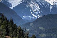 Montana Adventures / by Megan Fleming