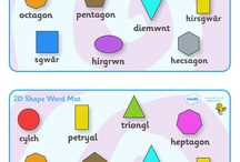 Primary numeracy