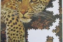 Rompe Cabezas  / muchos puzzles