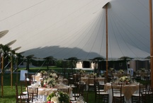 Sailcloth Tents / Some photos of our Sailcloth Tents