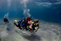 //Padi Open Water diver//