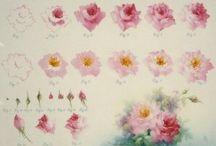 Rózsa festése