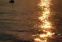 Sunsets / by Jasmina Garic