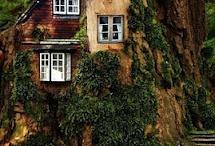 Ağaç Evler (Tree Houses)