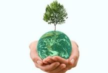 Global Green Trade