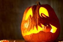 Fall & Halloween / by Barbara Koistinen
