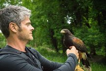 Steven Cox Instagram Photos Me and my friend, Romeo. @amberjessen - I'm sure you'd LOVE to do this!  #falcon #birds #ireland #fun