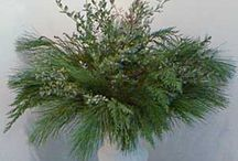 evergreen arrangements / by Reba Pridgin