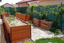 vysoké záhony Gardening