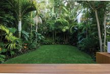 Tropical Landscaping Idea