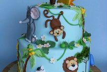 Safari Doğum günü