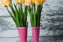 Aria di Primavera ! Spring is in the air !