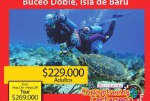 Nuestros servicos / Planes divertidos, tous y paseos en Cartagena colombia