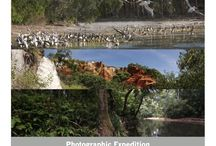 Photographic expedition