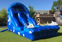 18' Dolphin Dive Water Slide!