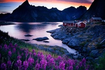 Norway / by francesca