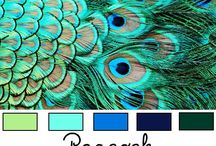 Wedding Colours  / I know I want a peacock themed wedding, now I just need to decide exactly what colours I want.