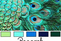 Kool colors / by Judy Thompson
