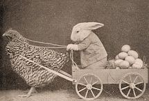 Spring/Easter & Bunnies