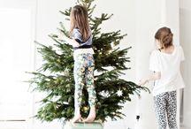 CHRISTMAS / Christmas Decoration, Minimal DIY, Green, Snow