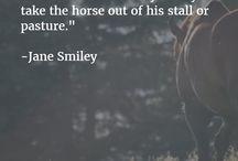 Inspiratiebord paardenvoornemens