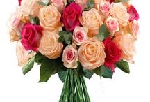 Fleurs roses / Le rose : féminité, romantisme, séduction, bonheur, tendresse, jeunesse.