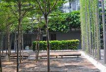 Parky a veřejný prostor