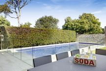 A place in the sun / Some of our favourite gardens and courtyards from properties for sale or sold by Cobden & Hayson in Sydney's Inner West