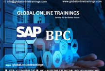 IBM NETEZZA training, IBM NETEZZZA Online training in India, USA, UK, Canada / IBM NETEZZA Online Training course classes conducted by Global Online Trainings with real-time experienced faculty. We provide material, demo videos, online