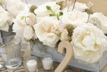 New Creations / Wedding bouquets, centerpieces, and other floral inspirations / by Jenn Armaly