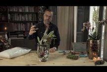 Filmy florystyka