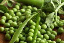 Veggie and herb garden