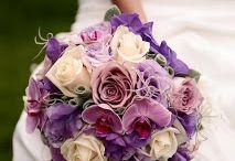 purple moments