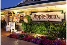 apple farming / how to farm apples