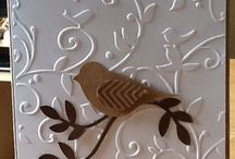cards: birds, bees, butterflies, dragonflies