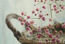 «Vintage, Shabby Chic, Provençal e Romantico».