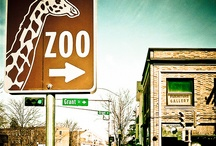 Other Zoos