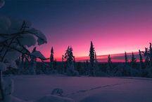 Finlands vinter wonderland