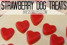Valentine's Day Pets