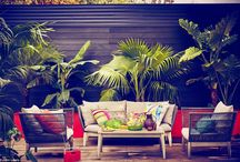 Interior Trends / Interior Trends that everyone needs to know