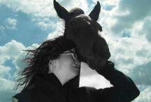 Equus / ...